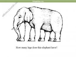 images (1) hur många ben
