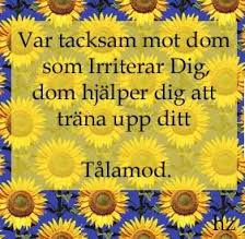 talamod-1