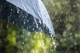 paraplyväder