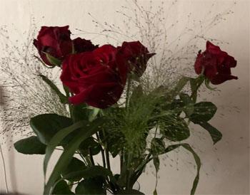 fem röda rosor